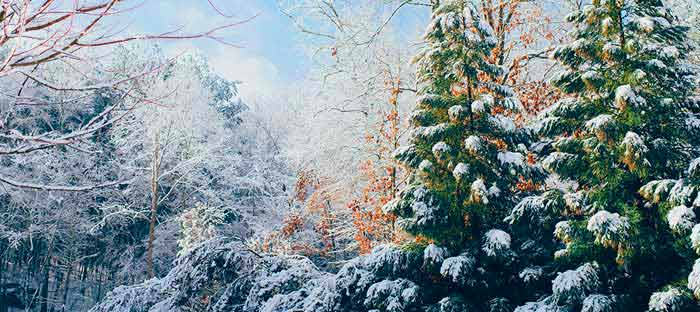 winter is a wonderful time to enjoy shopping, dining, and the wonderful sights in Flemington, Hunterdon County NJ